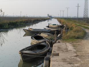 Canal de la marjal de l'Albufera